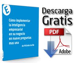 Libro BI