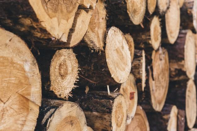 astilladora de leña tecnologia sector madera